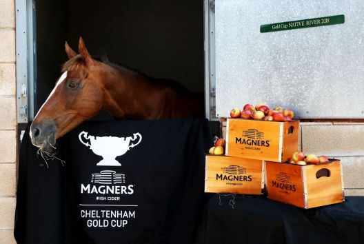 Magners first past the post with Cheltenham Gold Cup