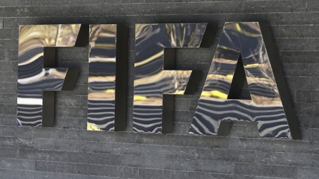 Fifa teams up with Council of Europe to protect human rights